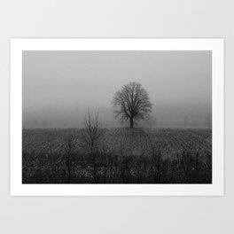 Tree and Snow, Ottawa Art Print