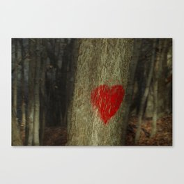in the heart of the forest Canvas Print