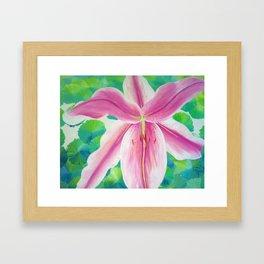 Jane's Lily Framed Art Print