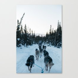 SNOW - HUSKIES - SLED - FOREST Canvas Print