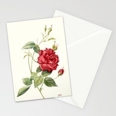 Botanical study - Rose Stationery Cards