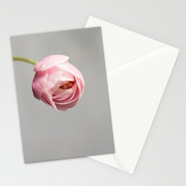 blossom on grey Stationery Cards