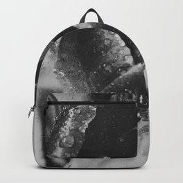 crocus bnw Backpack