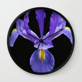 Blue Iris Flower Wall Clock