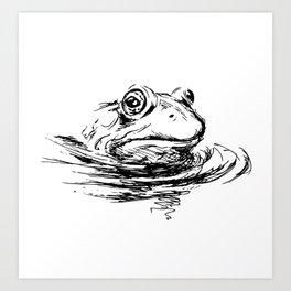 Head of the frog Art Print