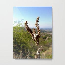 Brown 3 Leaf Weed Metal Print