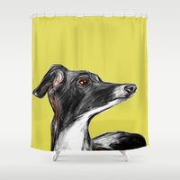 greyhound Shower Curtains featuring Greyhound by James Peart