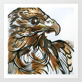 Red Tailed Tea Hawk Art Print