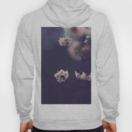 Beautiful White Flower Blossoms Against Purple Background Hoody