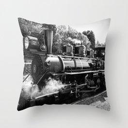 No 2 Baldwin at Brecon Throw Pillow
