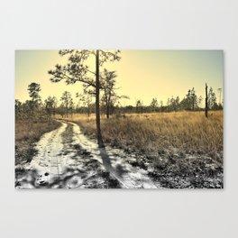Sandhills Canvas Print