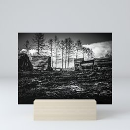 Poltery Site (Wood Storage Area) After Storm Victoria Möhne Forest bw Mini Art Print