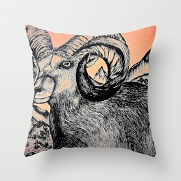 Sunrise in the Rockies Throw Pillow