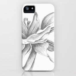 Gental Breeze by Rushingwater Studios iPhone Case