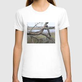 Quiet on the Intercoastal T-shirt