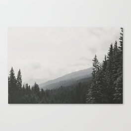 The Land Part II Canvas Print
