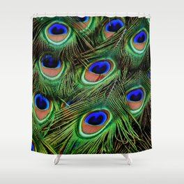 Peacock feathers | Plumes de Paon Shower Curtain