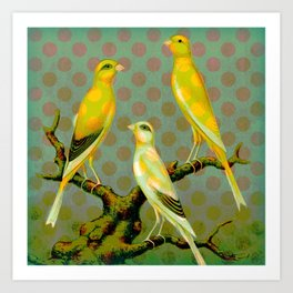 Canaries with Dots Art Print