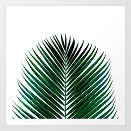 LEAVES2 Art Print