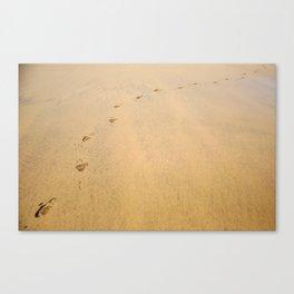 Lead On Canvas Print