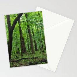 Rainy Forest Trails Stationery Cards
