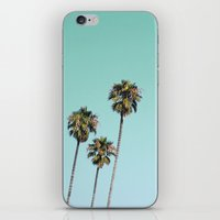 palm trees iPhone & iPod Skins featuring Palm Trees by Mareike Böhmer Photography
