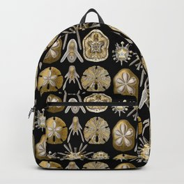 Ernst Haeckel - Scientific Illustration - Echinidea (Sea Urchins) Backpack