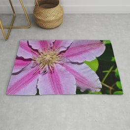 Pink Clematis by Teresa Thompson Rug