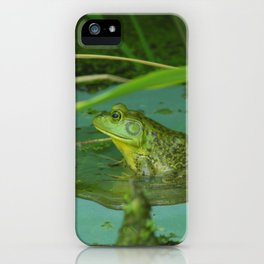 Frog Photography Print iPhone Case
