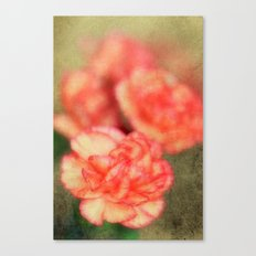 Concrete Carnation Canvas Print