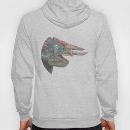 Happy Chameleon (watercolor) Hoody