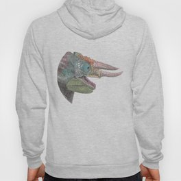 Happy Chameleon (watercolor) Hoody