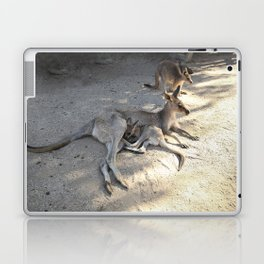 Kangaroo and Joeys Laptop & iPad Skin