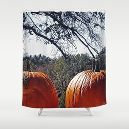 Nice Pair Shower Curtain