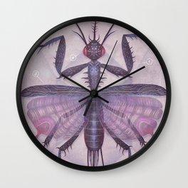 Entomology Tab. IV Wall Clock