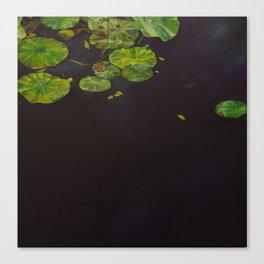 Water meditation II Canvas Print