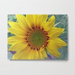 Little Sunflower Metal Print