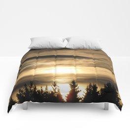 Descension Comforters