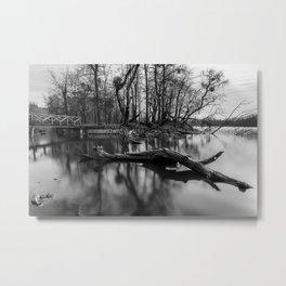 Floating Metal Print