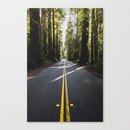 Redwoods Road Trip - Nature Photography Canvas Print