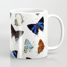 Vintage Butterfly Illustration Coffee Mug