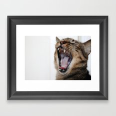 Yawning Is Contagious Framed Art Print