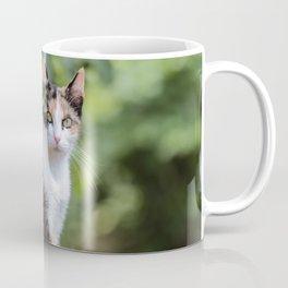 Are you meowing to me? Coffee Mug