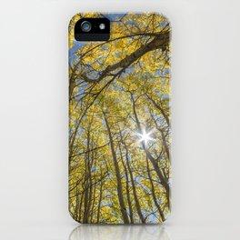 Sparkling Autumn 2 iPhone Case