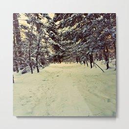 Wintery Snowshoe Hike Metal Print