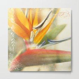 Bird of Paradise - Strelitzea reginae - Tropical Flowers of Hawaii Metal Print