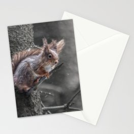 squirrel in the snow Stationery Cards