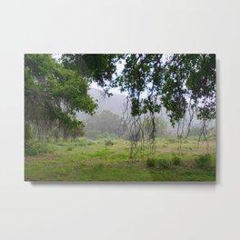 Santa Susana Mountains Metal Print