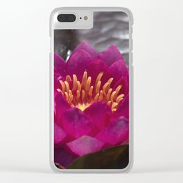 Longwood Gardens - Spring Series 302 Clear iPhone Case