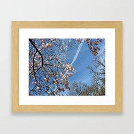 A View Skyward Framed Art Print
